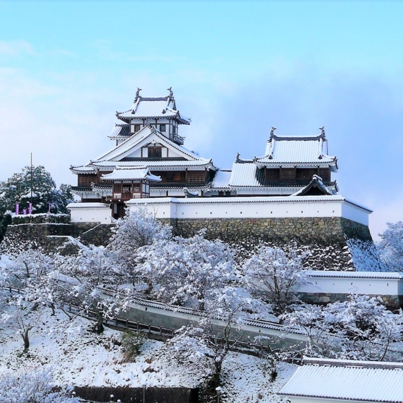 雪が降ったら出かけよう! 京都府内の今しか見られない幻想的な冬の絶景スポット
