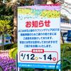春爛漫の横浜公園