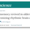 高齢者の脳機能を大幅に改善する可能性の一歩か?