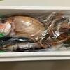 生きた魚がネットで買える時代