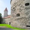 #261 フィンランド旅行6日目 対岸の隣国エストニア・タリンへ