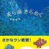 「美ら海 きらめく」で、神秘的な沖縄の海を見てみよう
