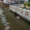 チャオプラヤー・エクスプレスでター・ティアン・ピアに行った。タイ「バンコク」