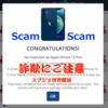 【Scamに注意】ニュージーランドで初めてネット詐欺(画像あり) - 2021/04/11