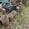 乾燥した木 ほぼ満杯 Dried wood