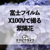 X100Vで撮る紫陽花
