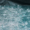 「雨は絶好の釣り日和」