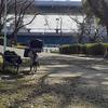 西成で暮らす。6日目 「ウーバーイーツでしのぐ」