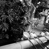 上野で岩盤浴
