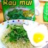 【今日の食卓】ヴェトナム製インスタント「パクチーラーメン」~生パクチーを加えて