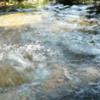 水道代をただにする法2