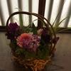 花で彩る IN 新潟市文化財旧小澤家住宅