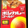 世界初のレトルト食品 大塚食品のボンカレーゴールド 辛口《フィラ〜食品シリーズ #1》