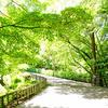 久しぶりの東山植物園