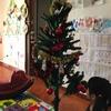 12月8日にクリスマスツリーを飾りました。