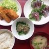 【レポート】お魚さばき教室