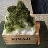 KIWAJI@高松 しゃりしゃりかき氷