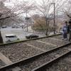 2021年の桜予習②:2020年3月京都で撮影した桜