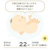 妊婦ブログ☆出産予定日まで残り22日