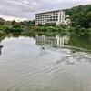鏡ヶ池(福島県二本松)