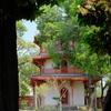 台南 孔子廟にはリスがいます