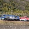 第370列車 「 甲193 JR貨物 DD200-901号機の甲種輸送を狙う・後編 」