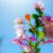 桜の咲いたその日には 雲は隠れて春を祝いて