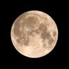 「月(ブルームーン)」の撮影 2020年10月31日(機材:コ・ボーグ36ED、スリムフラットナー1.1×DG、E-PL5、ポラリエ)