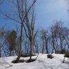 雪遊び&温泉&グルメが楽しめるホテルベルナティオ(新潟県) 楽天トラベルでお得!