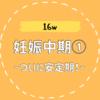 【16w/妊娠中期①】安定期突入!が、メンタルは全く安定せず
