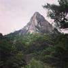 比叡山(宮崎)でマルチ #1