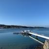 【呼子のイカ】海中レストラン「萬坊」で食べたいオススメのメニュー「いかコース」