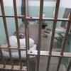 監獄島アルカトラズ島ツアー+ハイアット・ヒルトン・HIEX宿泊記