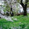 断捨離の季節、春到来!誰でも簡単に片付けがはじめられる、おすすめの場所とは?