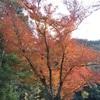 2017/11/28&12/1  御岳 トラバースやっぱ好き