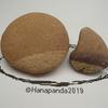 「クリそっくり石」Imaginative stone おもしろ石 Vol.14