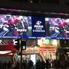 期待に胸膨らむ、レース前日。   香港国際競走2016  観戦旅行記    その3  前日編