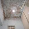 浴室防カビ塗装 西東京市