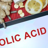 葉酸は毎日コツコツ食べ物から摂ろう