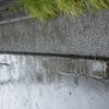余所事でない、九州北部の豪雨による「河川氾濫被害」に寄せて!