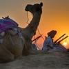 Tinariwen(ティナリウェン) 毎日が高音注意報の日本で アフリカ砂漠のブルースを聞くということ