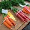 色々な野菜とヒラタケ。