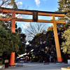 川越の氷川神社でロケハン