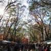 森の手づくり市にでてきたこと #手づくり市 #kyoto  #空空商會朝来 #がまぐち #糺の森 #下鴨神社