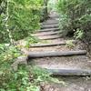 【神戸/hiking】思った以上の美しさ!布引の貯水池〜夏の山歩き
