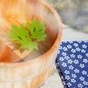 見晴らしの湯 ふれあい館 日帰り温泉の雰囲気や特徴など:群馬県前橋市