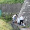 水路の草刈り チューリップを植える キンモクセイ