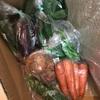有機野菜の宅配を頼んでみました。一人暮らしにはどうかというと。。
