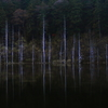 秋の木曽風景写真