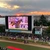 2020 ターコイズステークス 感想戦とアーモンドアイ引退式